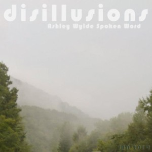 Disillusions Cover